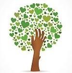 ccas arbre