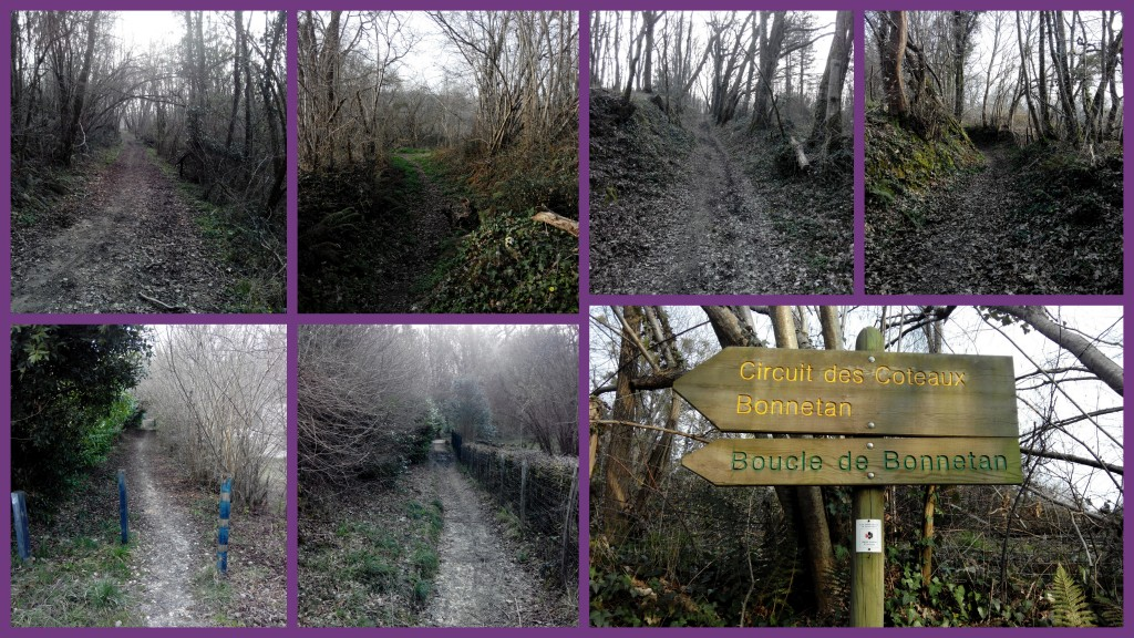 Chemin de Bertrille